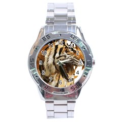 Royal Tiger National Park Stainless Steel Analogue Watch