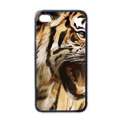 Royal Tiger National Park Apple Iphone 4 Case (black)