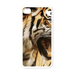 Royal Tiger National Park Apple Iphone 4 Case (white)