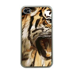 Royal Tiger National Park Apple Iphone 4 Case (clear)