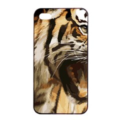 Royal Tiger National Park Apple Iphone 4/4s Seamless Case (black)