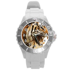 Royal Tiger National Park Round Plastic Sport Watch (l)