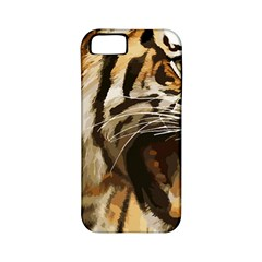 Royal Tiger National Park Apple iPhone 5 Classic Hardshell Case (PC+Silicone)