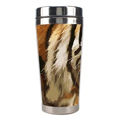 Royal Tiger National Park Stainless Steel Travel Tumblers