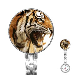 Royal Tiger National Park Stainless Steel Nurses Watch