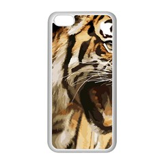 Royal Tiger National Park Apple Iphone 5c Seamless Case (white)