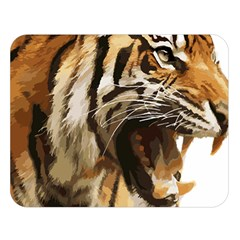 Royal Tiger National Park Double Sided Flano Blanket (Large)