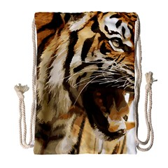 Royal Tiger National Park Drawstring Bag (large)
