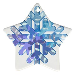 Snowflake Blue Snow Snowfall Star Ornament (two Sides)