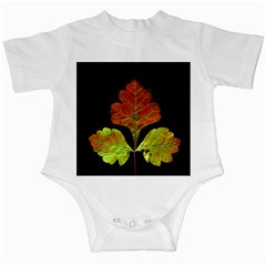 Autumn Beauty Infant Creepers