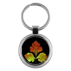 Autumn Beauty Key Chains (Round)