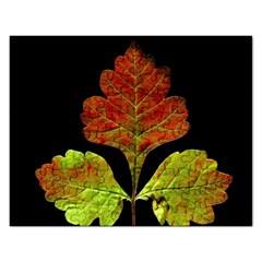 Autumn Beauty Rectangular Jigsaw Puzzl