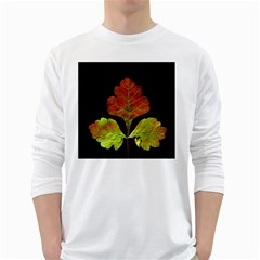 Autumn Beauty White Long Sleeve T-Shirts