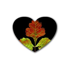 Autumn Beauty Heart Coaster (4 pack)