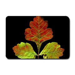 Autumn Beauty Small Doormat