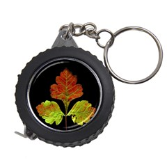 Autumn Beauty Measuring Tapes