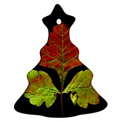 Autumn Beauty Christmas Tree Ornament (Two Sides)