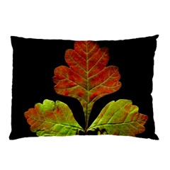 Autumn Beauty Pillow Case (Two Sides)