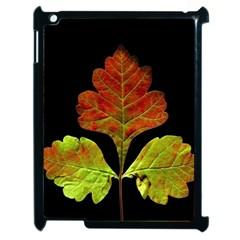 Autumn Beauty Apple iPad 2 Case (Black)