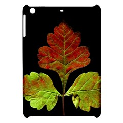 Autumn Beauty Apple iPad Mini Hardshell Case