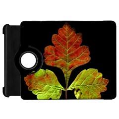 Autumn Beauty Kindle Fire HD 7