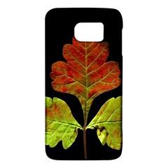 Autumn Beauty Galaxy S6
