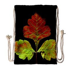 Autumn Beauty Drawstring Bag (Large)
