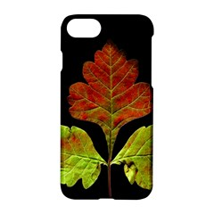 Autumn Beauty Apple Iphone 7 Hardshell Case