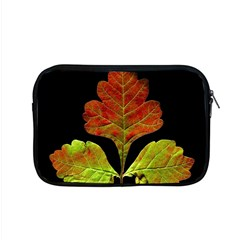 Autumn Beauty Apple Macbook Pro 15  Zipper Case