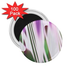 Colored Pattern 2.25  Magnets (100 pack)
