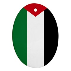 Palestine flag Ornament (Oval)