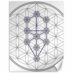Tree Of Life Flower Of Life Stage Canvas 18  x 24