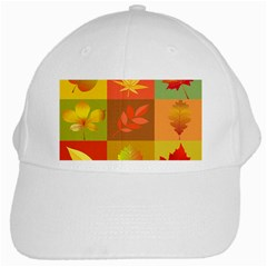 Autumn Leaves Colorful Fall Foliage White Cap