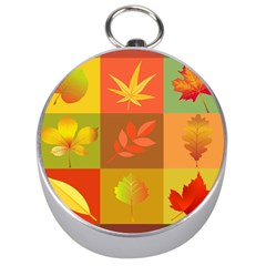Autumn Leaves Colorful Fall Foliage Silver Compasses