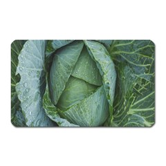 Bright Cabbage Color Dew Flora Magnet (Rectangular)