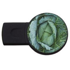 Bright Cabbage Color Dew Flora USB Flash Drive Round (1 GB)