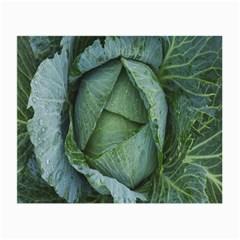 Bright Cabbage Color Dew Flora Small Glasses Cloth