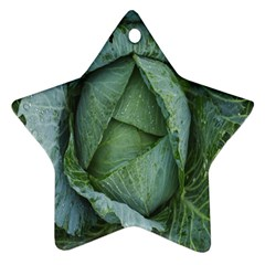 Bright Cabbage Color Dew Flora Star Ornament (Two Sides)