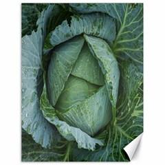 Bright Cabbage Color Dew Flora Canvas 18  x 24