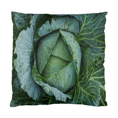 Bright Cabbage Color Dew Flora Standard Cushion Case (One Side)