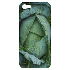Bright Cabbage Color Dew Flora Apple iPhone 5 Hardshell Case
