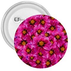 Dahlia Flowers Pink Garden Plant 3  Buttons