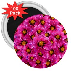 Dahlia Flowers Pink Garden Plant 3  Magnets (100 pack)