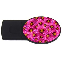 Dahlia Flowers Pink Garden Plant USB Flash Drive Oval (1 GB)
