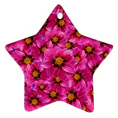 Dahlia Flowers Pink Garden Plant Star Ornament (Two Sides)