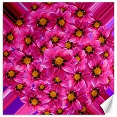 Dahlia Flowers Pink Garden Plant Canvas 16  x 16
