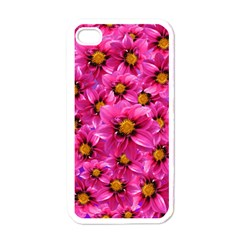 Dahlia Flowers Pink Garden Plant Apple iPhone 4 Case (White)