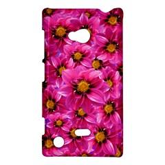 Dahlia Flowers Pink Garden Plant Nokia Lumia 720