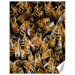 Honey Bee Water Buckfast Canvas 12  X 16
