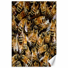 Honey Bee Water Buckfast Canvas 12  x 18